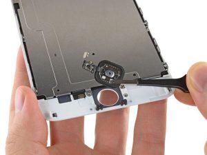 iPhone 6 Plus – Thay thế cụm nút home