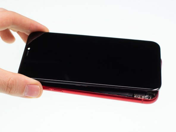 Thay thế iPhone 11 LCD và số hóa
