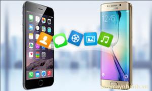 Cách chuyển dữ liệu từ Android sang iPhone cho người mới bắt đầu